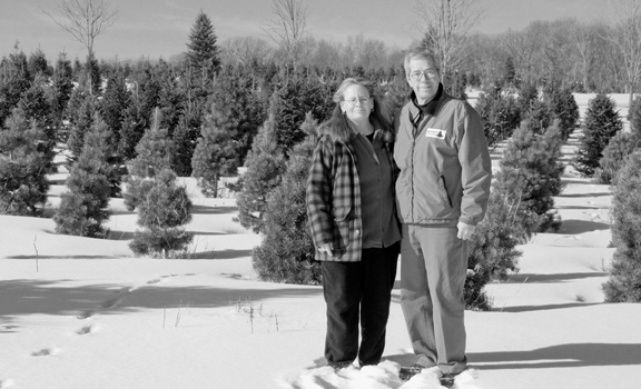 Deb and Neil Kreuger run a Christmas tree farm in Lake Elmo.  (Photo by Andrew VonBank)