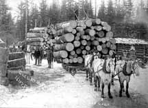 Magnuson and Lindell Logging Camp; Photographer: Burkhart; Photograph Collection ca. 1890; Photo courtesy of the Minnesota Historical Society
